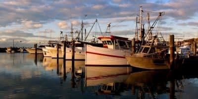 Where Should You Go Fishing In Australia?